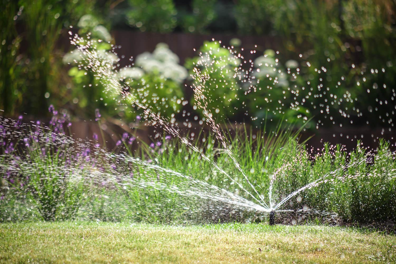 amenagements-paysagers-arrosage_automatique_par-nature-et-jardin-paysagistes-des-hauts-de-france_photo_robin.pirez_1500x1000px
